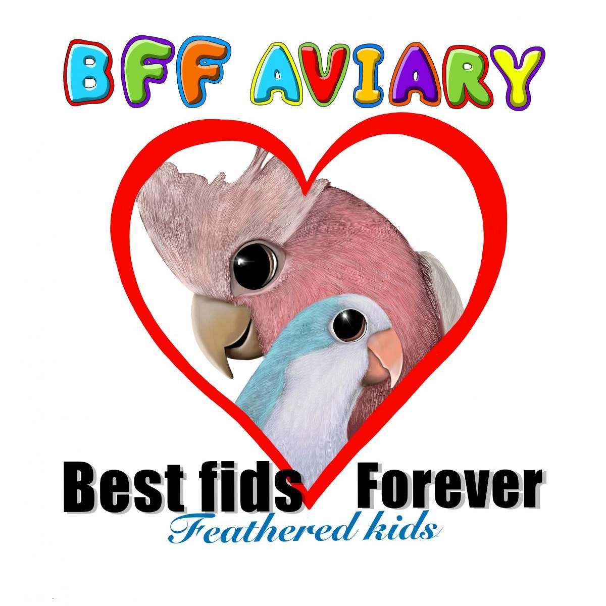 BFF Aviary