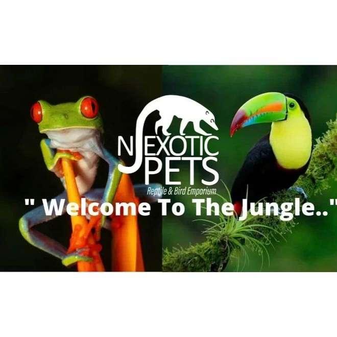 NJ Exotic Pets Reptile and Bird Emporium